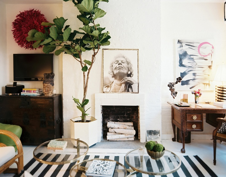 Fiddle Leaf Fig, Lonny Mag
